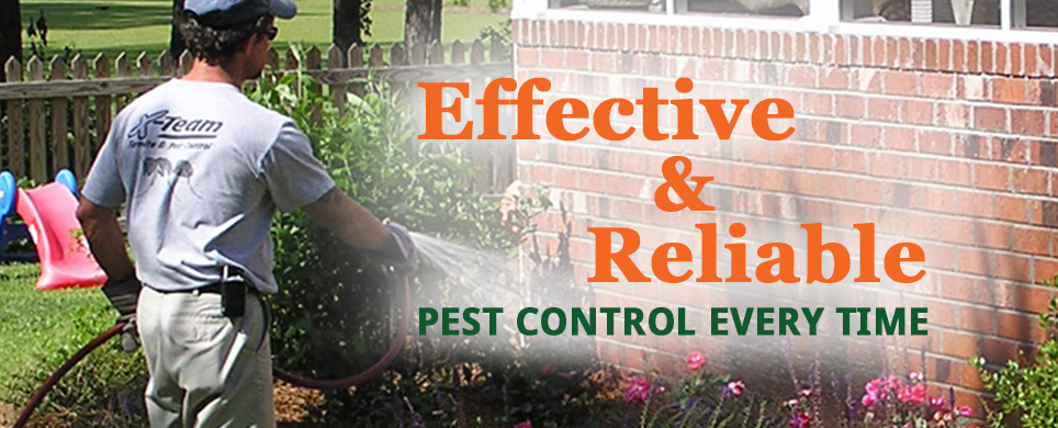 Effective & Reliable Pest Control Every Time